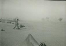 09_Camp_Young_CA_Windstorm