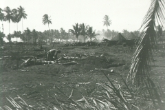 56_Maffin_Bay_The_area_near_Lone_Tree_Hill_after_the_battle