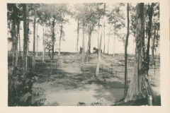 70_Sansapor_The_camp_the_morning_the_First_Infantry_pulled_out