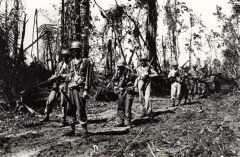 Troops_from_Company_F_20th_Inf_arrive_to_reinforce_attack_positins_on_hill_225_June_22_1944