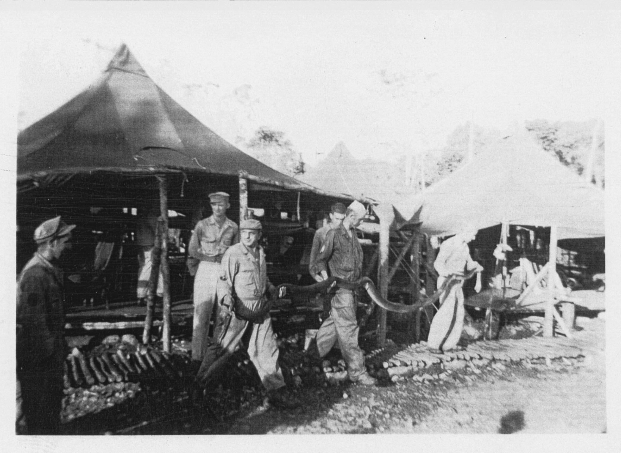 6th_Infantry_Pictures_Foschi_039